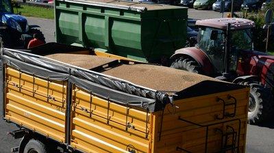 usda pasaulinė žemės ūkio prekybos sistema)